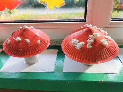 Galeria Pajacyki-kącik przyrodniczy